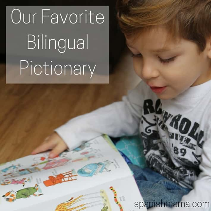Our Favorite Bilingual Pictionary