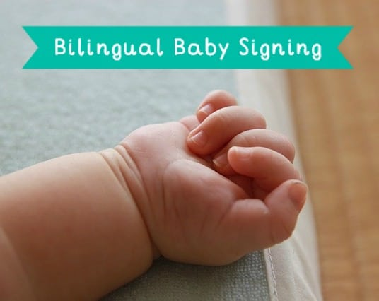 bilingual baby signs