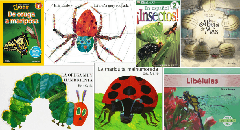 Spanish Bug Books for Toddlers and Kids